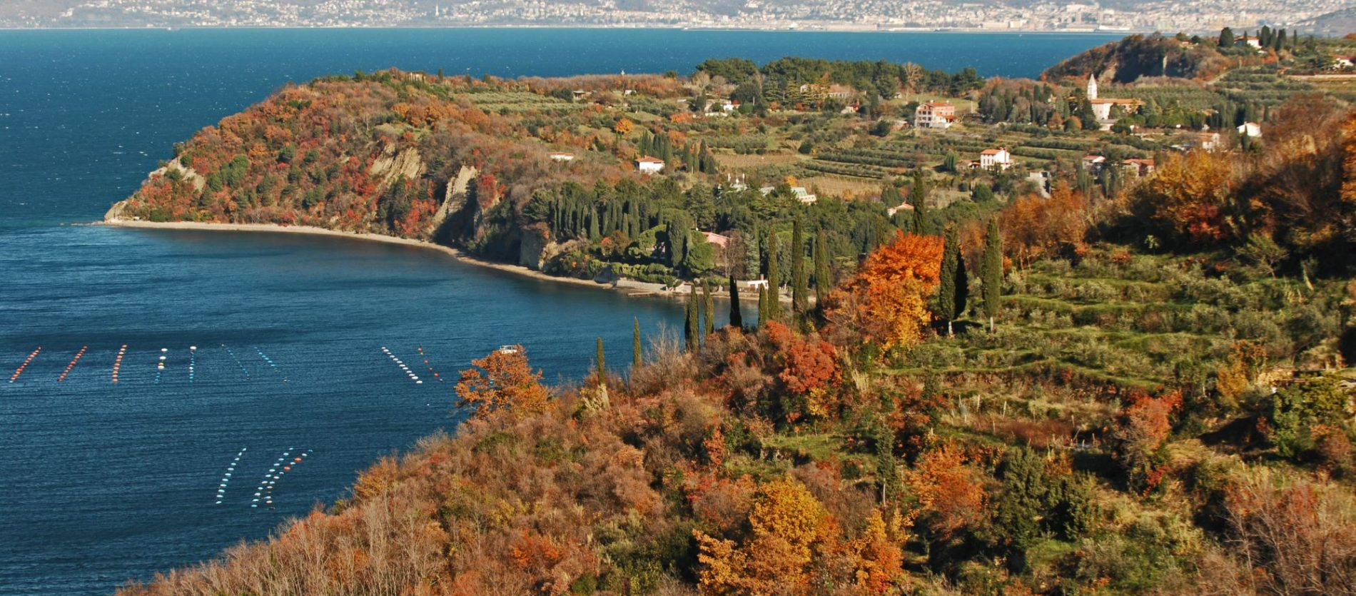 Experience the relaxed side of the Slovenian Coast